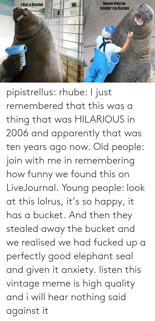 Vintage Meme: No00o they be  stealin' my Bucket  IHas a Bucket pipistrellus:  rhube:  I just remembered that this was a thing that was HILARIOUS in 2006 and apparently that was ten years ago now. Old people: join with me in remembering how funny we found this on LiveJournal. Young people: look at this lolrus, it's so happy, it has a bucket. And then they stealed away the bucket and we realised we had fucked up a perfectly good elephant seal and given it anxiety.  listen this vintage meme is high quality and i will hear nothing said against it