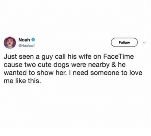 Cute, Dank, and Dogs: Noah  Follow  Noahast  Just seen a guy call his wife on FaceTime  cause two cute dogs were nearby & he  wanted to show her. I need someone to love  me like this.