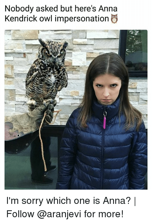 anna kendrick: Nobody asked but here's Anna  Kendrick owl impersonation I'm sorry which one is Anna? | Follow @aranjevi for more!