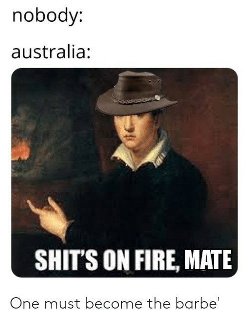on fire: nobody:  australia:  SHIT'S ON FIRE, MATE One must become the barbe'