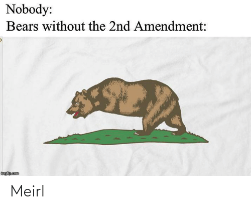Bears: Nobody:  Bears without the 2nd Amendment:  imgflip.com Meirl