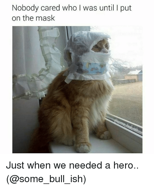 The Mask, Dank Memes, and Mask: Nobody cared who I was until l put  on the mask Just when we needed a hero.. (@some_bull_ish)