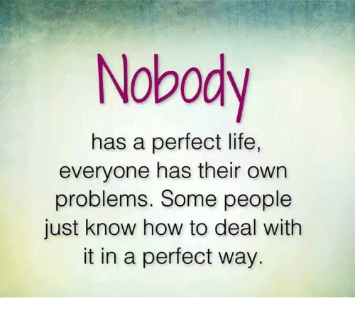 memes: Nobody  has a perfect life,  everyone has their own  problems. Some people  just know how to deal with  it in a perfect way.