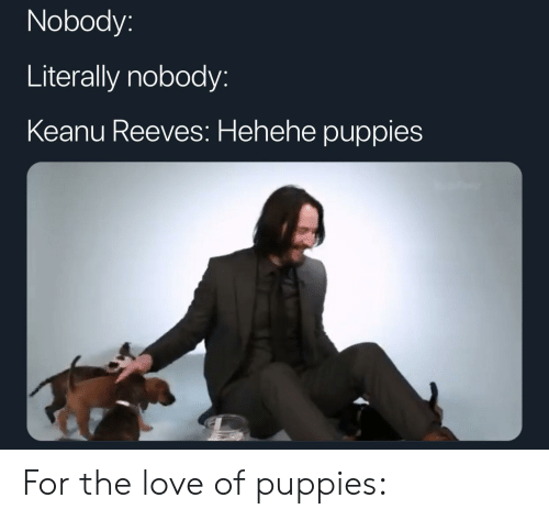 hehehe: Nobody:  Literally nobody:  Keanu Reeves: Hehehe puppies For the love of puppies: