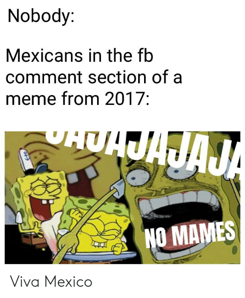 No Mames: Nobody:  Mexicans in the fb  comment section of a  meme from 2017:  AAJA  NO MAMES Viva Mexico