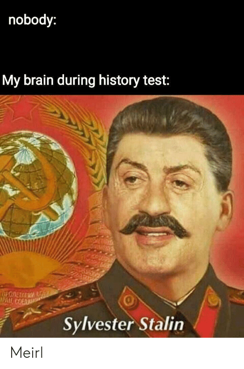 stalin: nobody:  My brain during history test:  0  Sylvester Stalin Meirl