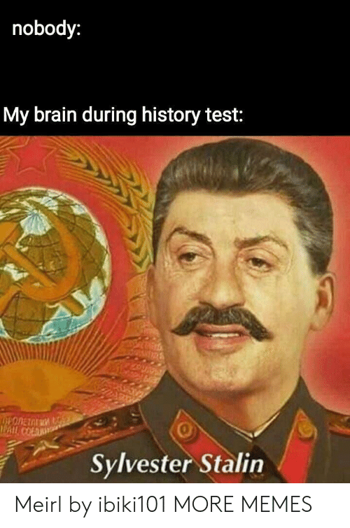 stalin: nobody:  My brain during history test:  0  Sylvester Stalin Meirl by ibiki101 MORE MEMES