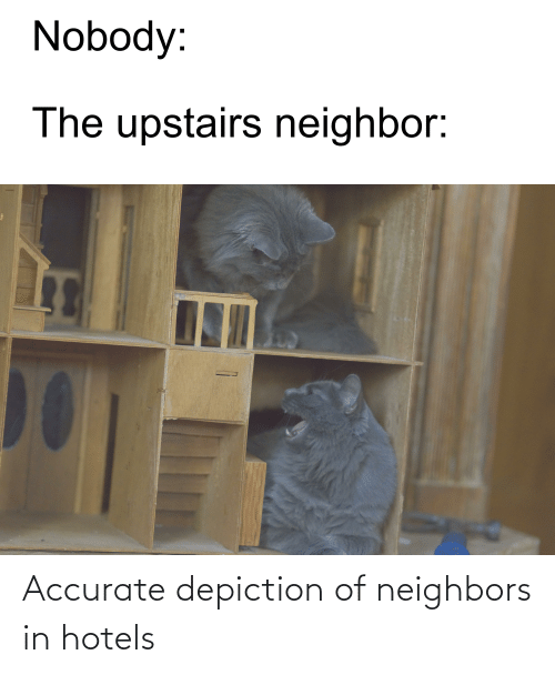 Upstairs Neighbor: Nobody:  The upstairs neighbor: Accurate depiction of neighbors in hotels