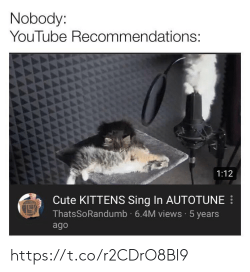 cute kittens: Nobody:  YouTube Recommendations:  1:12  Cute KITTENS Sing In AUTOTUNE  ThatsSoRandumb 6.4M views 5 years  ago https://t.co/r2CDrO8Bl9