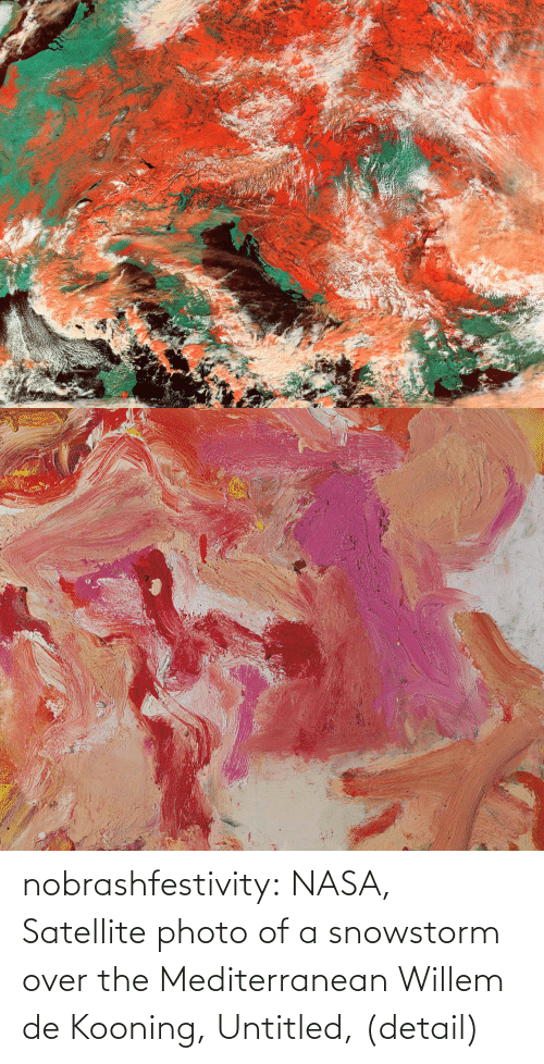 satellite: nobrashfestivity:  NASA, Satellite photo of a snowstorm over the Mediterranean  Willem de Kooning, Untitled, (detail)