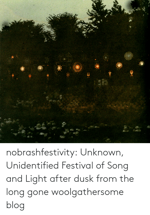 The Long: nobrashfestivity: Unknown,   Unidentified Festival of Song and Light after dusk   from the long gone woolgathersome blog