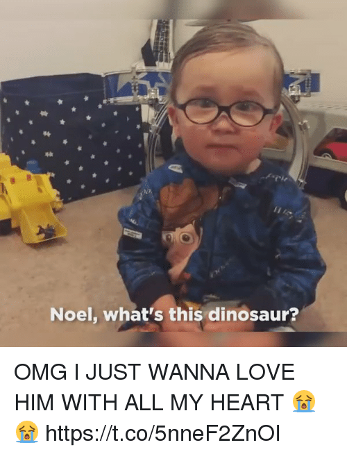 Dinosaur, Love, and Omg: Noel, what's this dinosaur? OMG I JUST WANNA LOVE HIM WITH ALL MY HEART 😭😭 https://t.co/5nneF2ZnOI