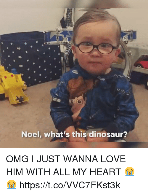 dinosaure: Noel, what's this dinosaur? OMG I JUST WANNA LOVE HIM WITH ALL MY HEART 😭😭 https://t.co/VVC7FKst3k