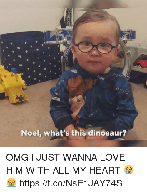 dinosaure: Noel, what's this dinosaur? OMG I JUST WANNA LOVE HIM WITH ALL MY HEART 😭😭 https://t.co/NsE1JAY74S