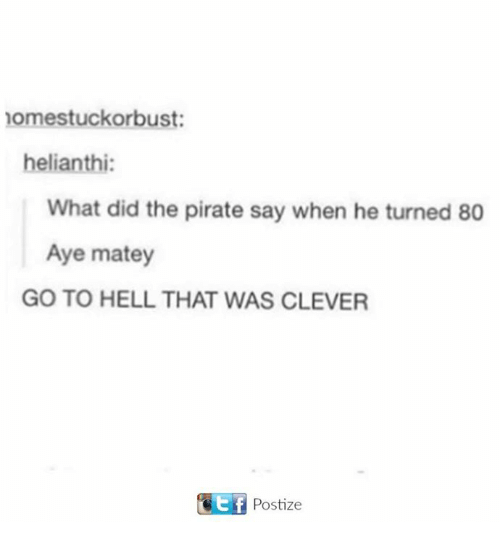 Pirate, Hell, and Did: nomestuckorbust:  helianthi:  What did the pirate say when he turned 80  Aye matey  GO TO HELL THAT WAS CLEVER  Ttf Postize
