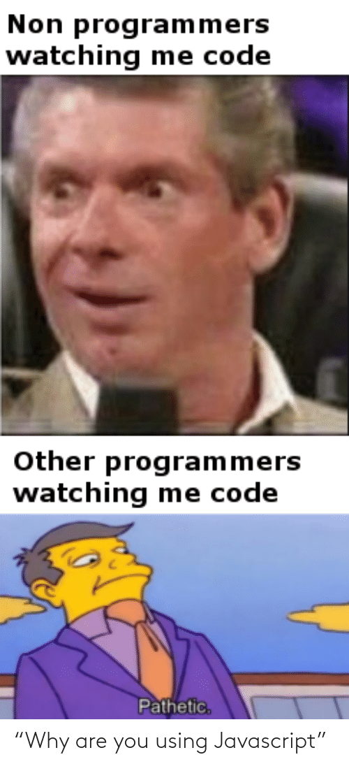 "pathetic: Non programmers  watching me code  Other programmers  watching me code  Pathetic, ""Why are you using Javascript"""
