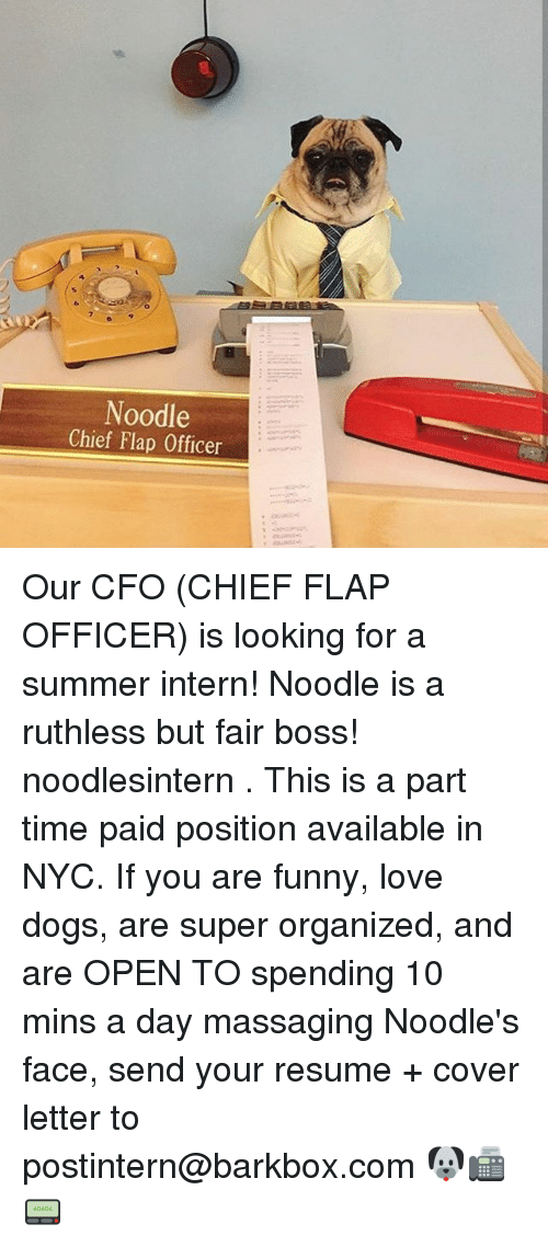 flapping: Noodle  Chief Flap Officer Our CFO (CHIEF FLAP OFFICER) is looking for a summer intern! Noodle is a ruthless but fair boss! noodlesintern . This is a part time paid position available in NYC. If you are funny, love dogs, are super organized, and are OPEN TO spending 10 mins a day massaging Noodle's face, send your resume + cover letter to postintern@barkbox.com 🐶📠📟