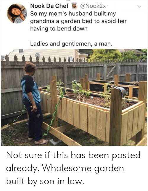 son in law: Nook Da Chef @Nook2x  So my mom's husband built my  grandma a garden bed to avoid her  having to bend down  Ladies and gentlemen, a man Not sure if this has been posted already. Wholesome garden built by son in law.