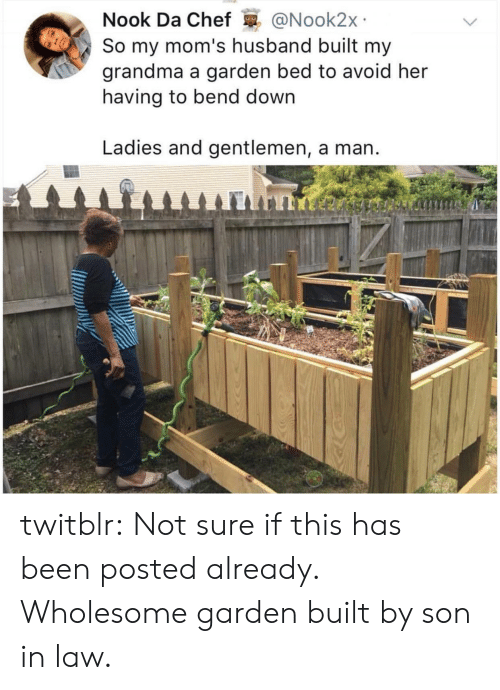 son in law: Nook Da Chef @Nook2x  So my mom's husband built my  grandma a garden bed to avoid her  having to bend down  Ladies and gentlemen, a man twitblr:  Not sure if this has been posted already. Wholesome garden built by son in law.