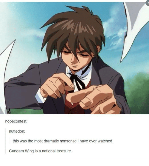 Memes, Watch, and Watches: nopecontest:  nuttedon:  this was the most dramatic nonsense i have ever watched  Gundam Wing is a national treasure.