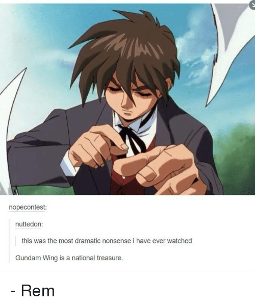 Memes, Watch, and Watches: nopecontest:  nuttedon:  this was the most dramatic nonsense i have ever watched  Gundam Wing is a national treasure. - Rem