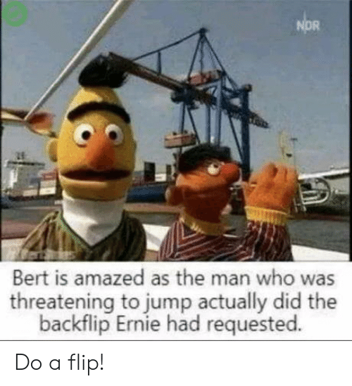 flip: NOR  Bert is amazed as the man who was  threatening to jump actually did the  backflip Ernie had requested. Do a flip!