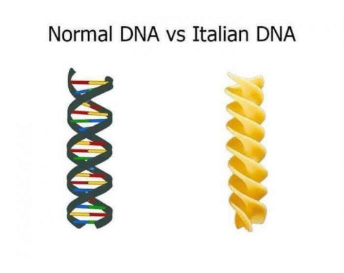 Dank Memes, Dna, and Italian: Normal DNA vs Italian DNA