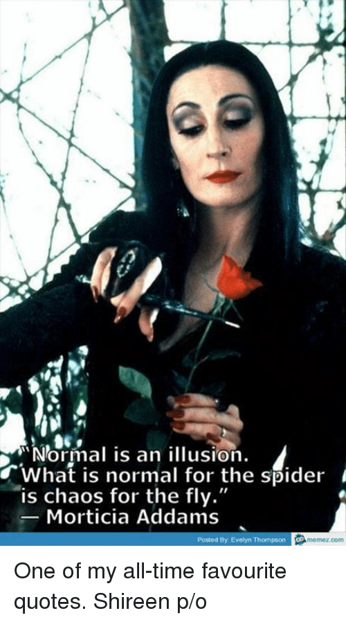 "morticia addams: ""Normal is an illusion.  What is normal for the spider  is chaos for the fly.""  Morticia Addams  Posted By Evelyn Thompson  memez com One of my all-time favourite quotes.   Shireen p/o"