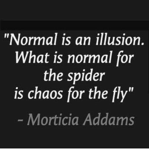 "morticia addams: ""Normal is an illusion  What is normal for  the spider  is chaos for the fly""  Morticia Addams"