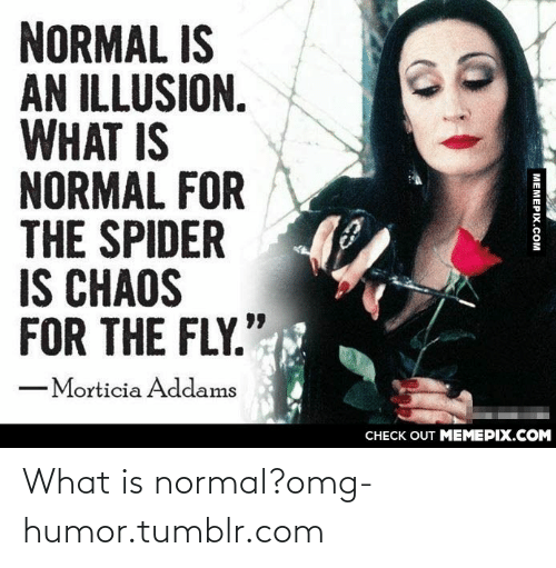 "morticia addams: NORMAL IS  AN ILLUSION.  WHAT IS  NORMAL FOR  THE SPIDER  IS CHAOS  FOR THE FLY."".  -Morticia Addams  CНECK OUT MЕМЕРIХ.COМ  MEMEPIX.COM What is normal?omg-humor.tumblr.com"