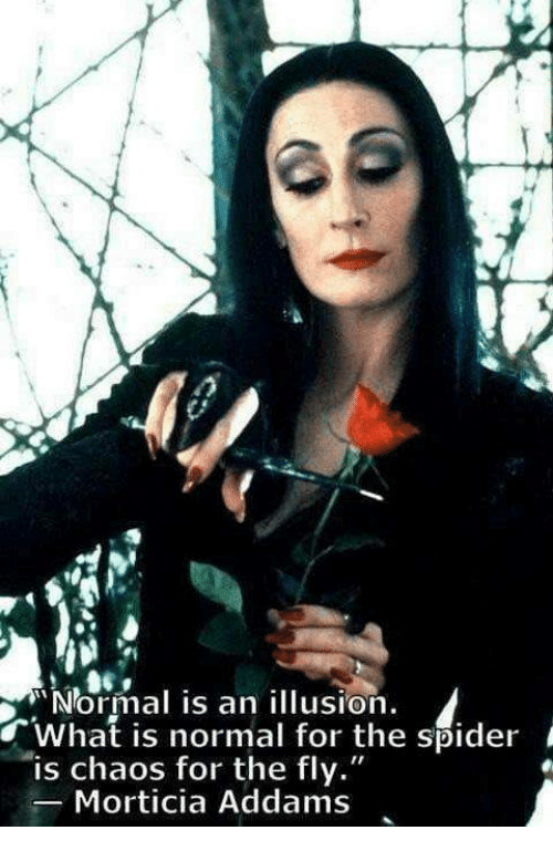 "morticia addams: ""Normal is an illusion.  what is normal for the spider i  is chaos for the fly.""  Morticia Addams"
