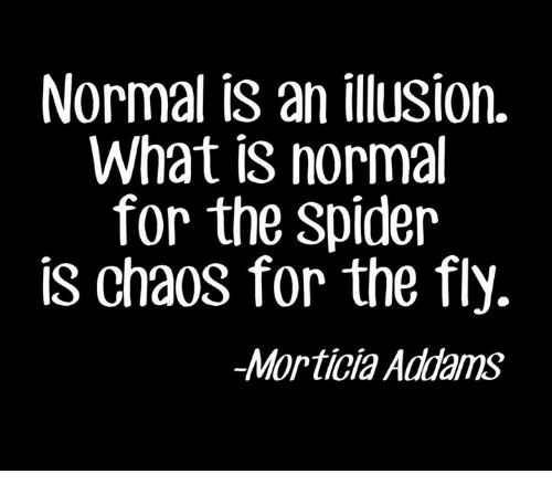 morticia addams: Normal is an ilusion.  What is norma  for the Spider  is chaos for the fly.  Morticia Addams