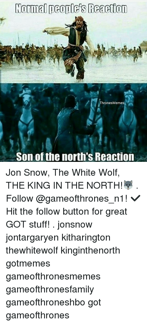Memes, Jon Snow, and Snow: Normal people's Reanetton  Thrones Memes  Son of the north's Reaction Jon Snow, The White Wolf, THE KING IN THE NORTH!🐺 . Follow @gameofthrones_n1! ✔ Hit the follow button for great GOT stuff! . jonsnow jontargaryen kitharington thewhitewolf kinginthenorth gotmemes gameofthronesmemes gameofthronesfamily gameofthroneshbo got gameofthrones