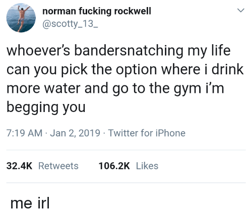scotty: norman fucking rockwell  @scotty 13  SC  whoever's bandersnatching my life  can you pick the option where i drink  more water and go to the gym i'm  begging you  7:19 AM-Jan 2, 2019 Twitter for iPhone  32.4KRetweets 106.2K Likes me irl