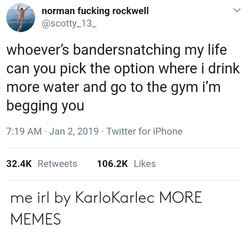 scotty: norman fucking rockwell  @scotty 13  SC  whoever's bandersnatching my life  can you pick the option where i drink  more water and go to the gym i'm  begging you  7:19 AM-Jan 2, 2019 Twitter for iPhone  32.4KRetweets 106.2K Likes me irl by KarloKarlec MORE MEMES