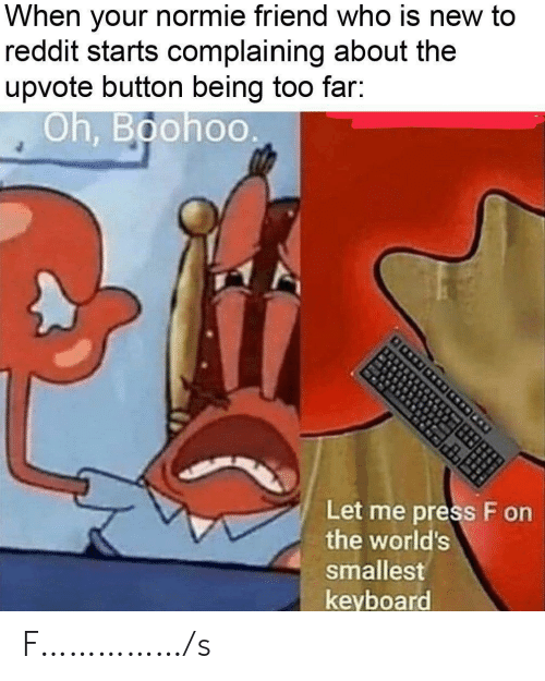 Normie: normie friend who is new to  When  your  reddit starts complaining about the  upvote button being too far:  Oh, Boohoo  Let me press F on  the world's  smallest  keyboard F……………/s