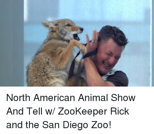 Animals, Anime, and Memes: North American Animal Show And Tell w/ ZooKeeper Rick and the San Diego Zoo!