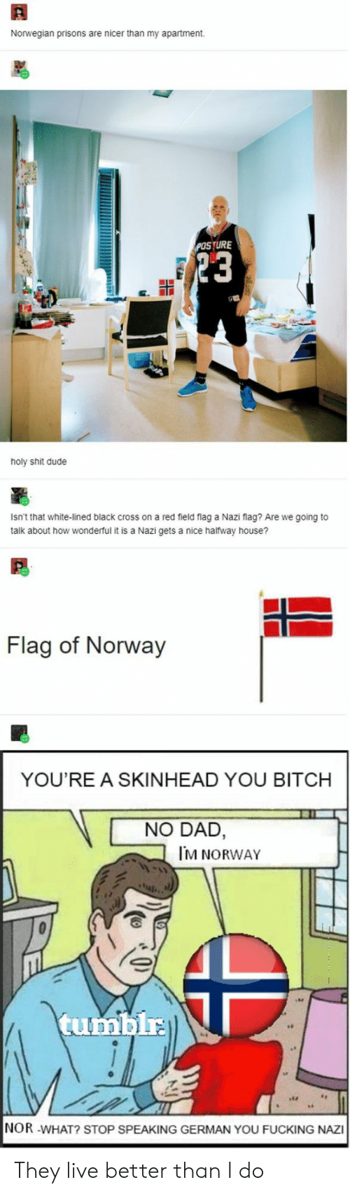 Norwegian: Norwegian prisons are nicer than my apartment  POSTURE  23  holy shit dude  Isn't that white-lined black cross on a red field flag a Nazi flag? Are we going to  talk about how wonderful it is a Nazi gets a nice halfway house?  Flag of Norway  YOU'RE A SKINHEAD YOU BITCH  NO DAD,  M NORWAY  tumblr  NOR -WHAT? STOP SPEAKING GERMAN YOU FUCKING NAZI They live better than I do