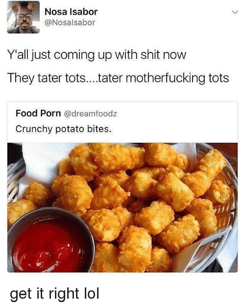 Food, Lol, and Memes: Nosa Isabor  @Nosalsabor  Yall just coming up with shit novw  They tater tots...ater motherfucking tots  Food Porn @dreamfoodz  Crunchy potato bites. get it right lol