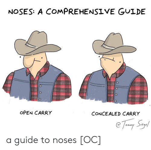 Open Carry: NOSES: A COMPREHENSIVE GUIDE  OPEN CARRY  CONCEALED CARRY  eqe a guide to noses [OC]
