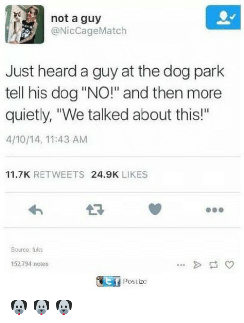"""nics: not a guy  @Nic Cage Match  Just heard a guy at the dog park  tell his dog """"NO!"""" and then more  quietly, """"We talked about this!""""  4/10/14, 11:43 AM  11.7K  RETWEETS  24.9K  LIKES  Source fuks  152,794 notes  Poslizc 🐶 🐶 🐶"""
