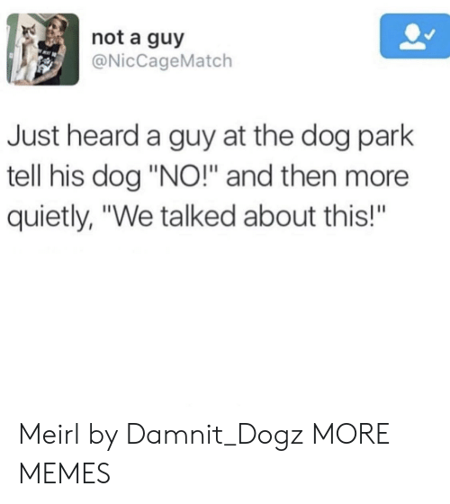 "Dog Park: not a guy  @NicCageMatch  Just heard a guy at the dog park  tell his dog ""NO!"" and then more  quietly, ""We talked about this!""  BA Meirl by Damnit_Dogz MORE MEMES"