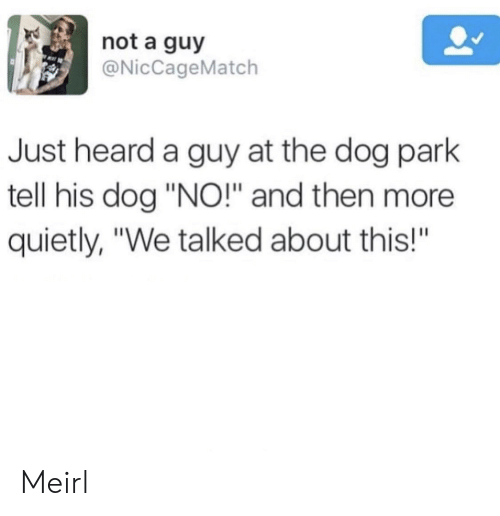 "Dog Park: not a guy  @NicCageMatch  Just heard a guy at the dog park  tell his dog ""NO!"" and then more  quietly, ""We talked about this!""  BA Meirl"