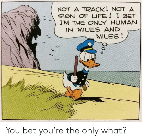 you bet: NOT A TRACK NOT A  SIGN OF LIFE I BET  I'M THE ONLY HUMAN  IN MILES AND  MILES You bet you're the only what?