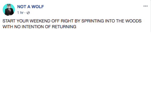 Wolf, Into the Woods, and Weekend: NOT A WOLF  1 hr  START YOUR WEEKEND OFF RIGHT BY SPRINTING INTO THE WOODS  WITH NO INTENTION OF RETURNING