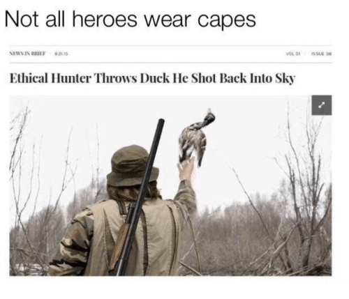ethical: Not all heroes wear capes  NEWS IN BRIEF 92115  Ethical Hunter Throws Duck He Shot Back Into Sky