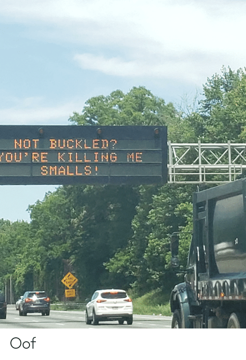 youre killing me: NOT BUCKLED?  YOU'RE KILLING ME  SMALLS! Oof