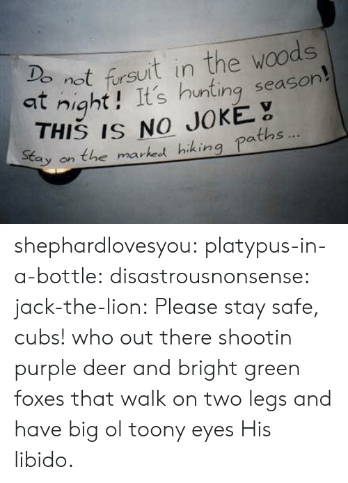 no joke: not fursuit in the woods  at night! It's hunting season  9  THIS IS NO JOKE  tay on the marked hiking paths shephardlovesyou:  platypus-in-a-bottle:  disastrousnonsense:  jack-the-lion:  Please stay safe, cubs!  who out there shootin purple deer and bright green foxes that walk on two legs and have big ol toony eyes   His libido.