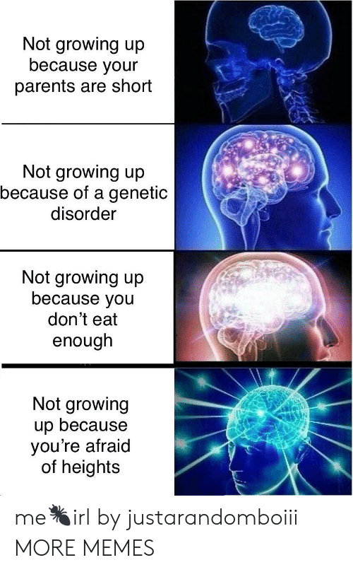 Afraid Of Heights: Not growing up  because your  parents are short  Not growing up  because of a genetic  disorder  Not growing up  because you  don't eat  enough  Not growing  up because  you're afraid  of heights me🐜irl by justarandomboiii MORE MEMES