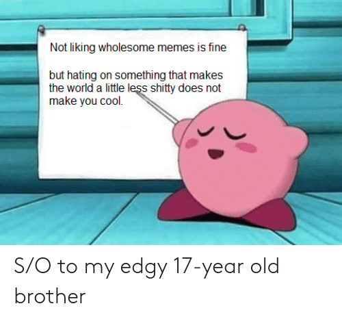 Hating: Not liking wholesome memes is fine  but hating on something that makes  the world a little less shitty does not  make you cool. S/O to my edgy 17-year old brother